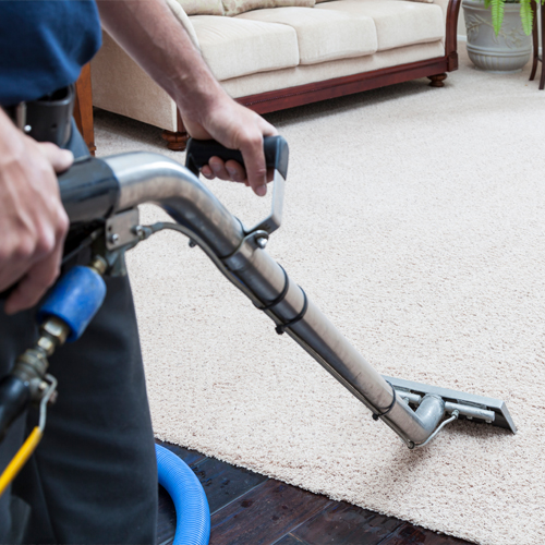 Carpet-Cleaning-services-Jersey-City-NJ-Polyester-& polyester-blends